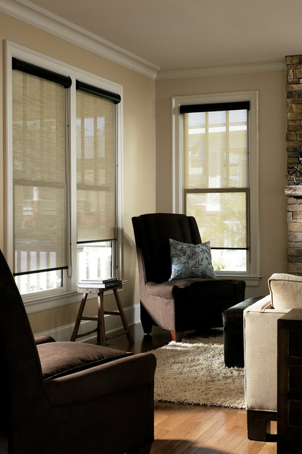 Solar Shades Contemporary Living Room Other Metro By The Shade Shop