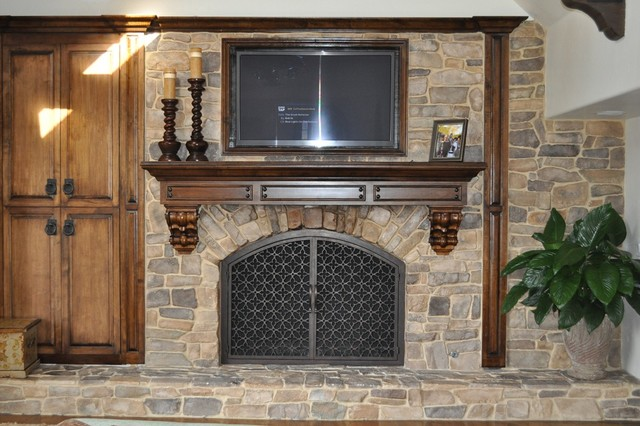 AMS Fireplace Doors Remodel Ideas - Traditional - Living ...
