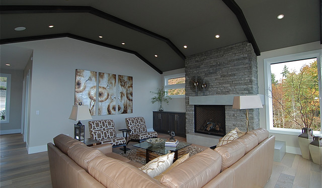 Stone accent wall and fireplace transitional living