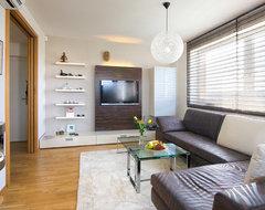 SUNNY FLAT contemporary-living-room
