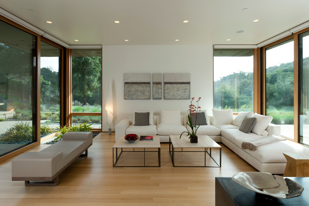 Inspiration for a mid-sized modern open concept light wood floor living room remodel in San Francisco with white walls, no fireplace and no tv