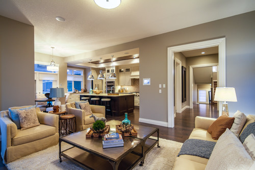 What Is The Paint Color In Kitchen And Living Room