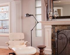 The Living Room contemporary-living-room