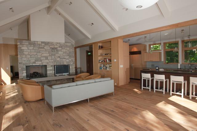 Thornapple River contemporary-living-room