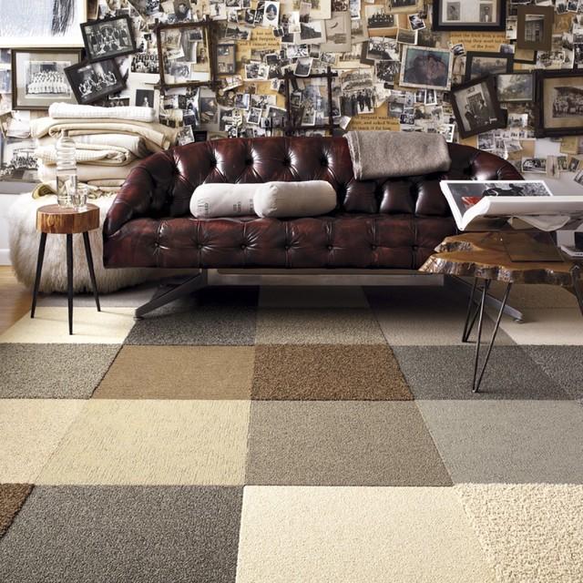 Toy Poodle modern-living-room