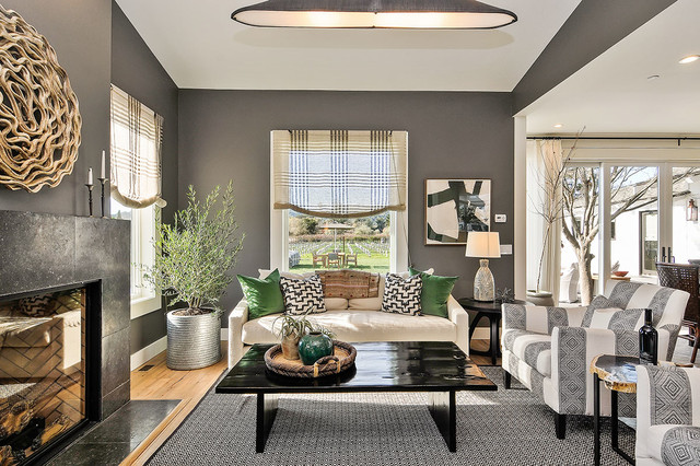 Traditional Home Napa Showcase Transitional Living Room