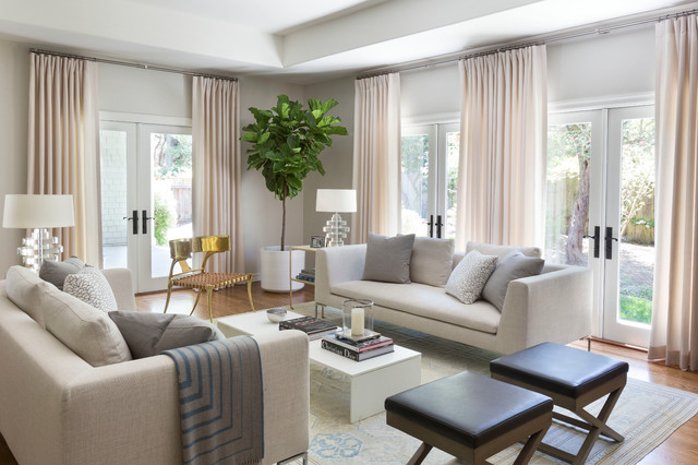 Traditional Interiors Transitional Living Room