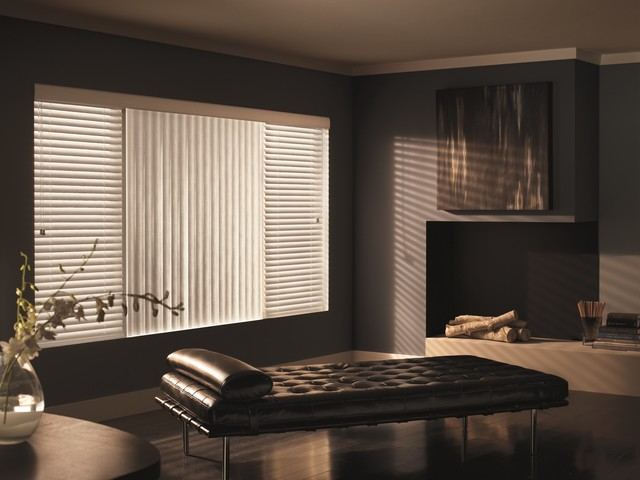 living room window blinds. Example of a classic living room design in Other Vertical Blinds  Houzz
