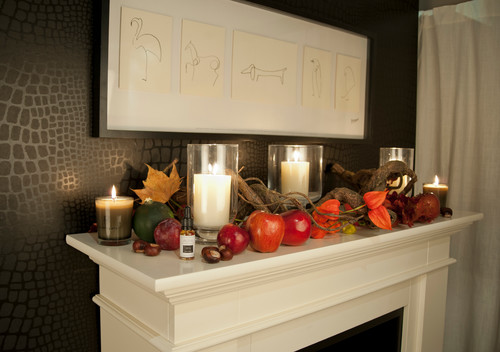 Traditional style fireplaces in living spaces