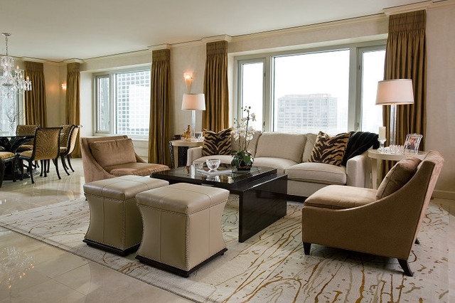 Transitional elegance condo modern living room Transitional contemporary