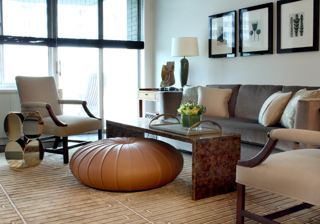 Contemporary Living Room transitional-living-room
