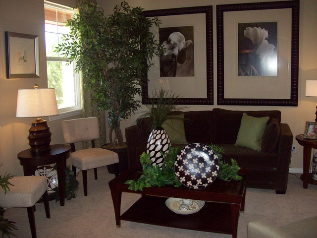 Transitional model home portfolio traditional living Model home family room pictures