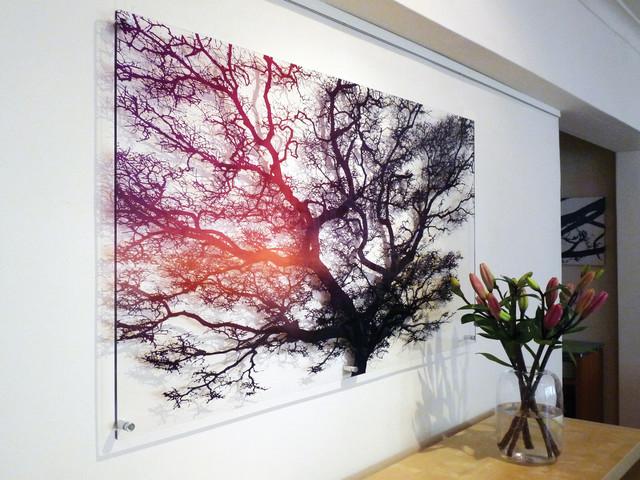 Transparent Perspex Plexiglas Artwork Featuring Striking