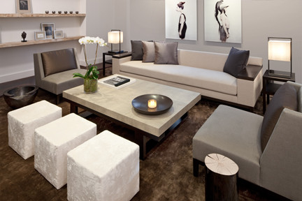 TRIBECA loft project modern-living-room