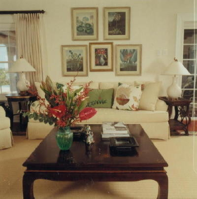 tropiclal living tropical-living-room