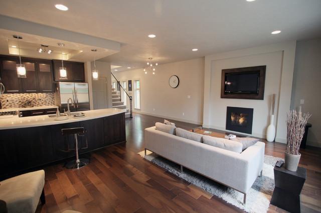 Urban Living Room Kitchen Eating Area Modern Living