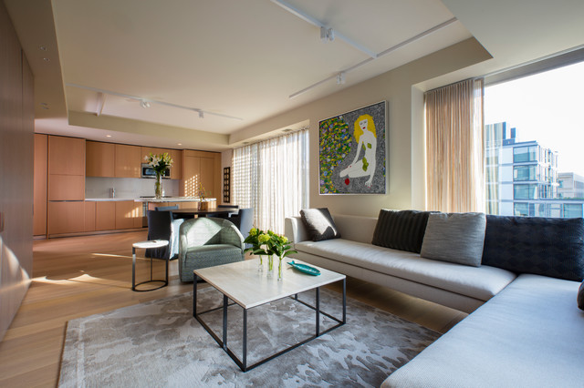 Urban sophistication contemporary living room dc metro by ernesto santalla pllc Contemporary urban living room