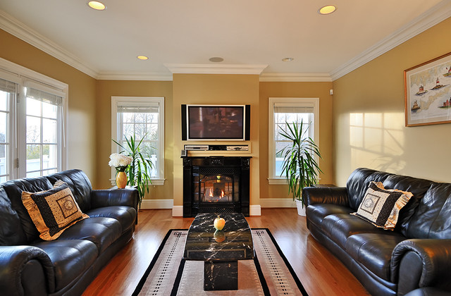 living room appliances. Appliances  Vermont Casting Direct Vent Gas Fireplace traditional living room Traditional Living