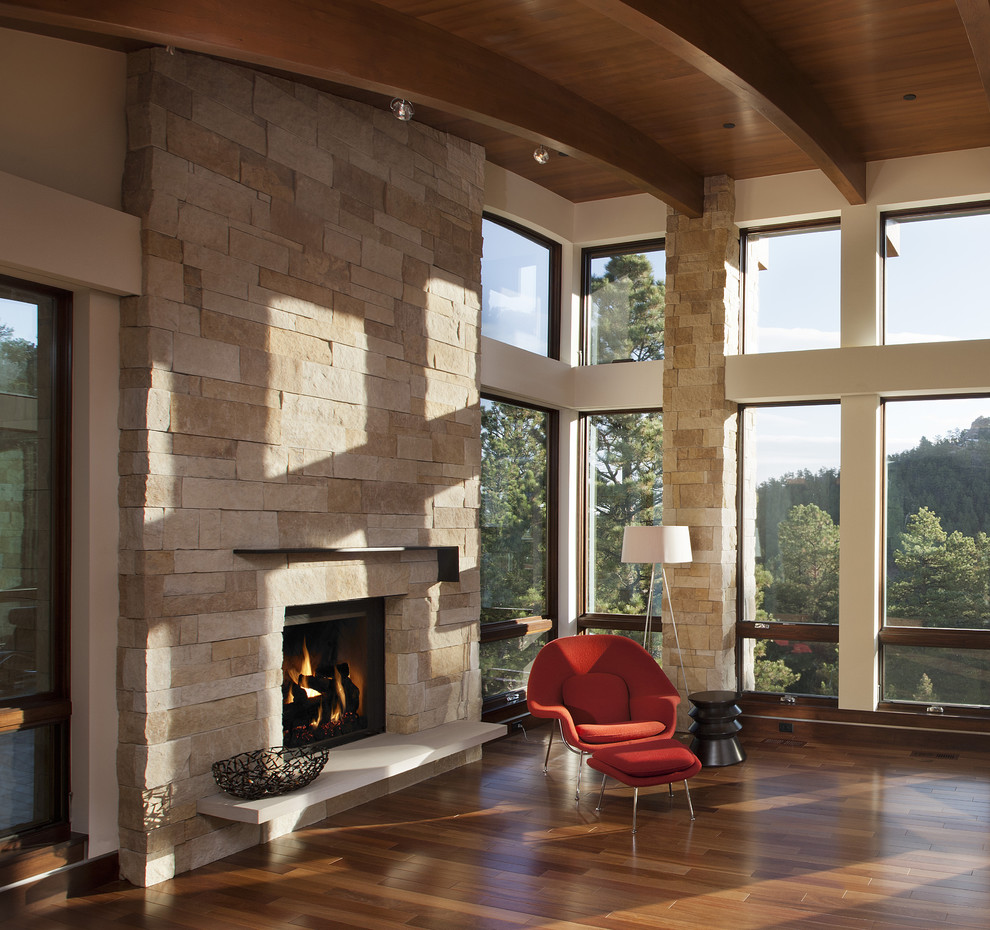 Minimalist living room photo in Denver with a stone fireplace