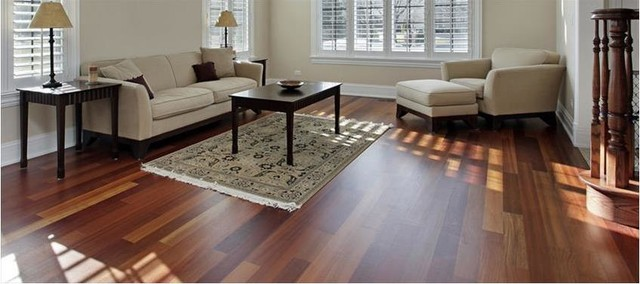Beau Photo Of A Rustic Living Room In Other With Dark Hardwood Flooring.