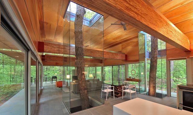 West Virginia Residence modern-living-room