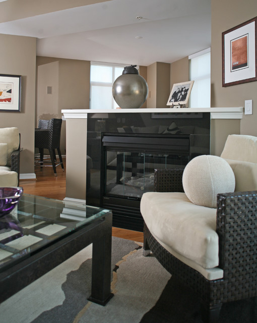 What A Difference Paint Makes Contemporary Living Room