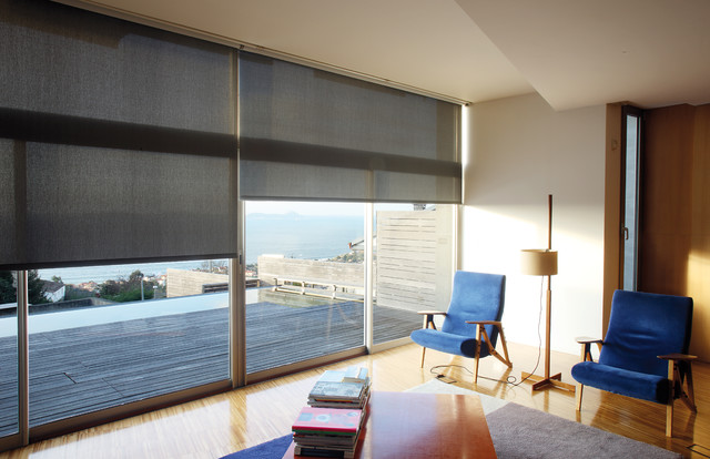 Window Treatments Contemporary Living Room