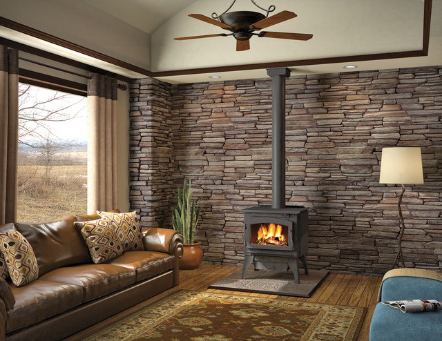 Wood Stoves Traditional Living Room Denver By