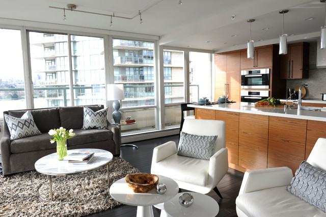 Yaletown contemporary-living-room
