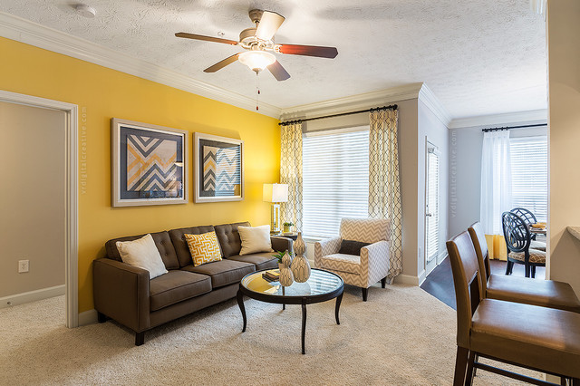 Yellow Accent Wall Living Room Transitional Living