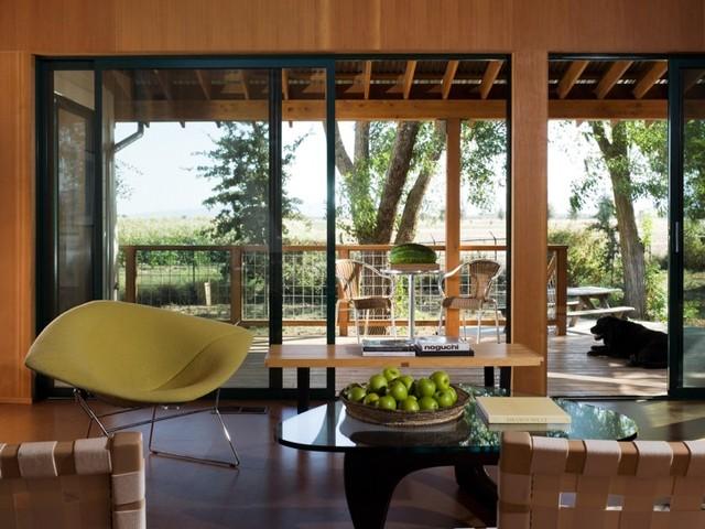 Yolo County Cabin contemporary-living-room
