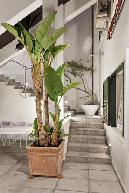 Esempio di un patio o portico design di medie dimensioni e in cortile con un giardino in vaso e pavimentazioni in pietra naturale