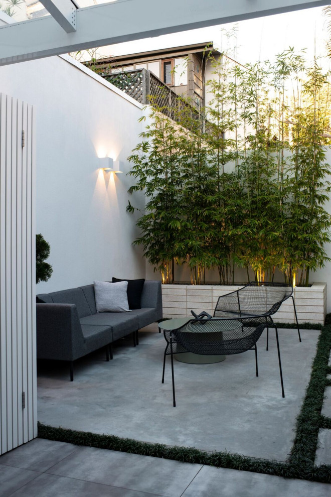 Inspiration for a small contemporary backyard concrete patio remodel in Sydney with no cover