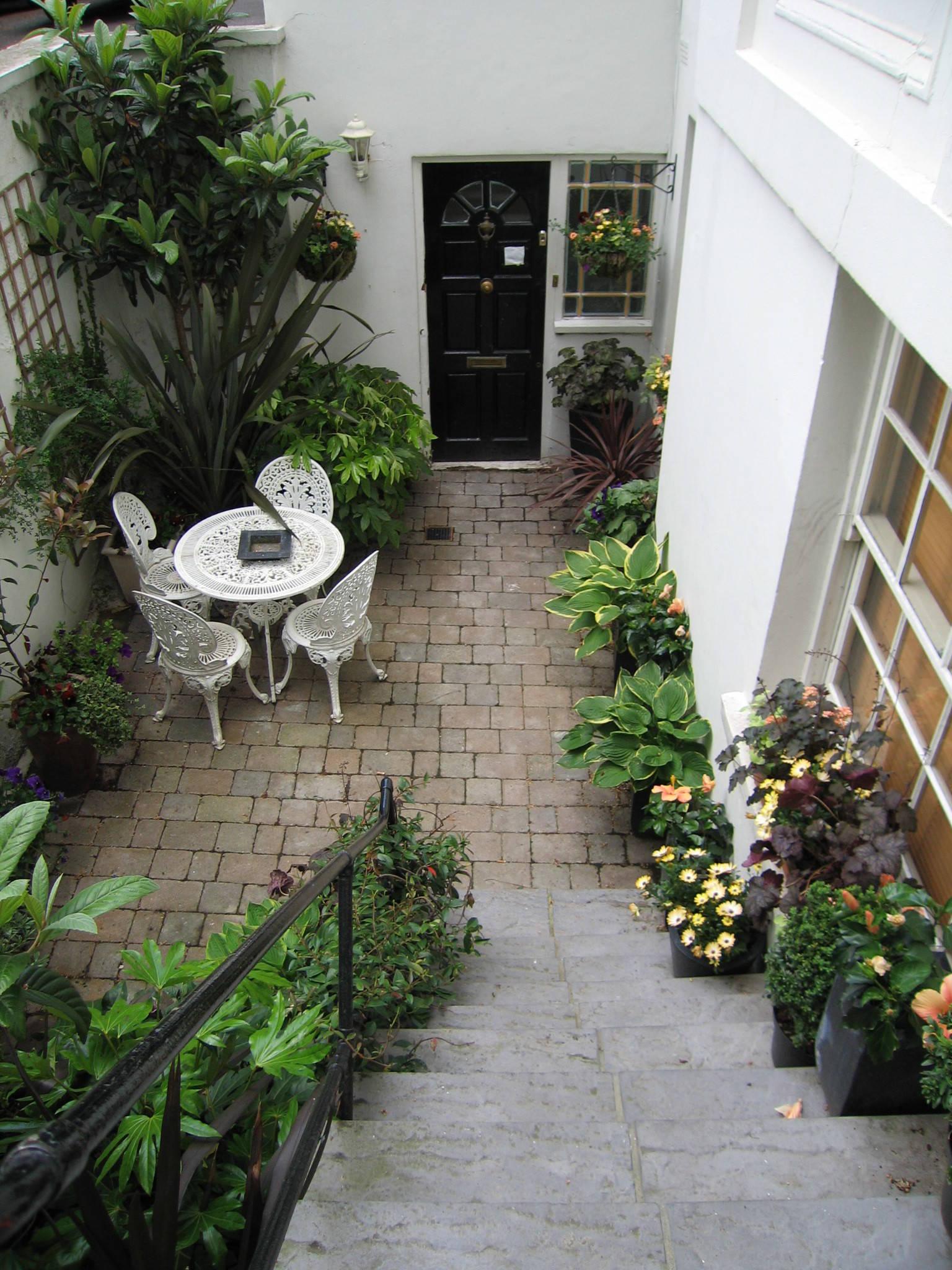 The Best Plants for a Small, Dark Courtyard Garden   Houzz UK