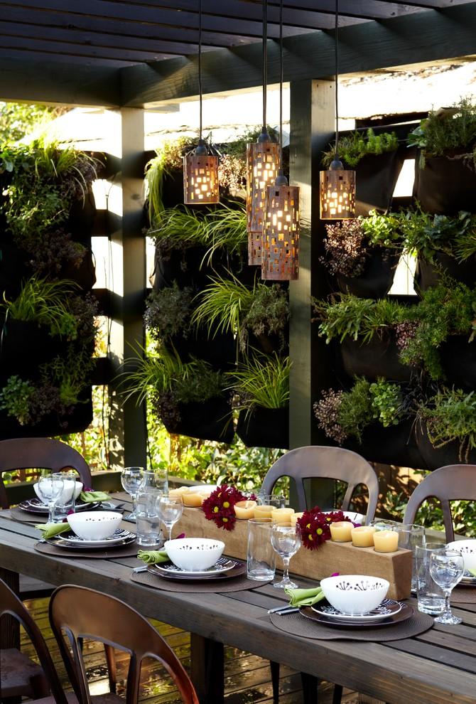 Urban backyard patio vertical garden photo in Melbourne with a pergola