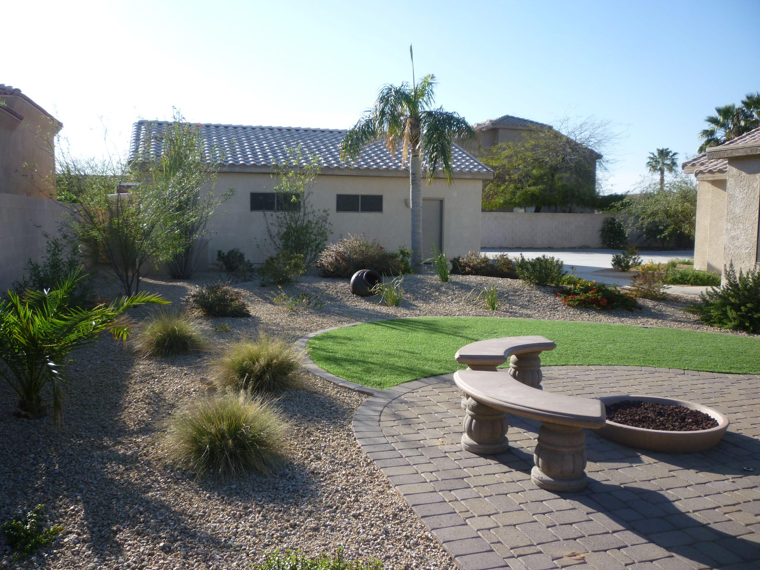 Backyard Plantings - 1.5 Years