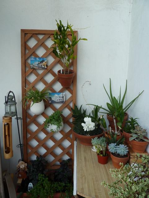 Balcony Garden tropical-patio