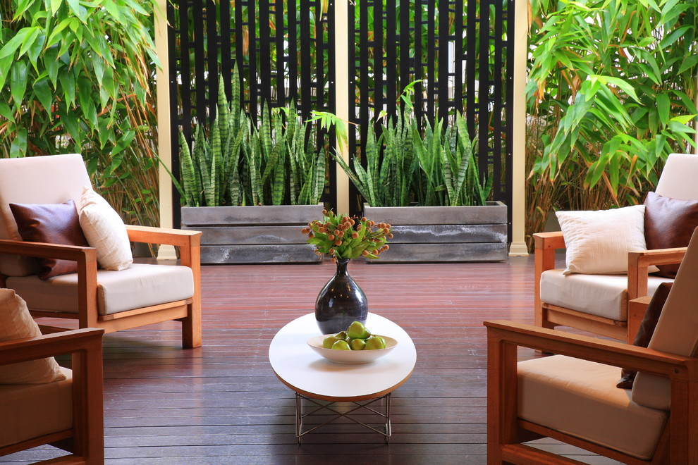 Example of an asian patio design in Sydney