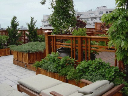 Berg Design Architects : greenwich village roofdeck traditional-patio