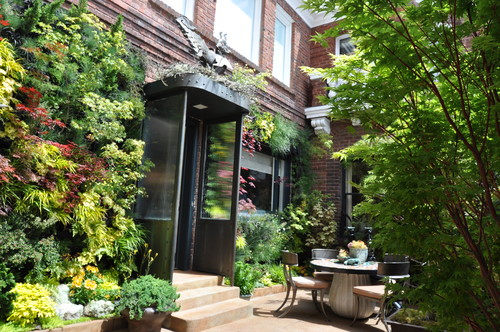 Birds of Prey Courtyard Garden by Living Green
