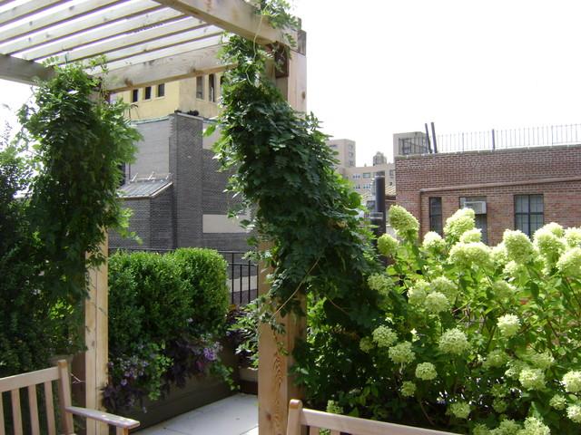 Classic Garden traditional-patio