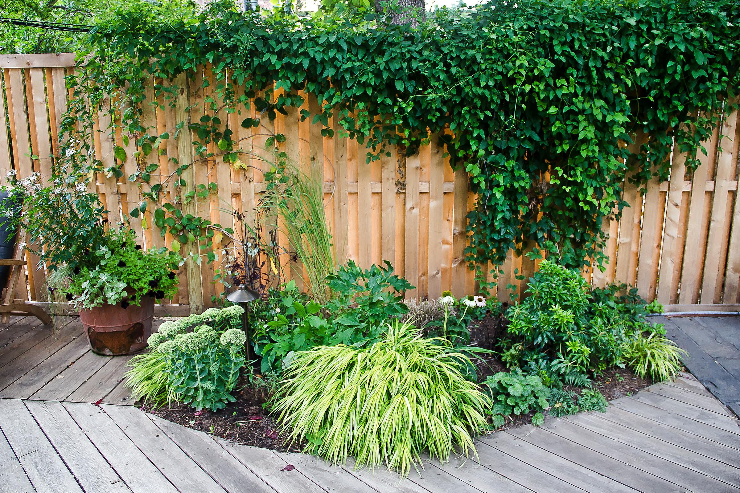 Cobble Hill Garden
