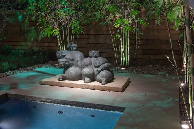 Contemorary Landscape and Pool Lap Design contemporary-patio