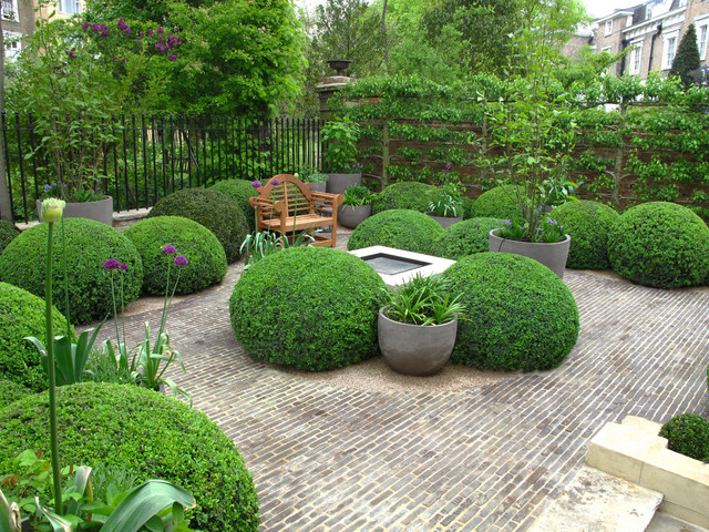 Deer Resistant Elegant Evergreen Shrubs