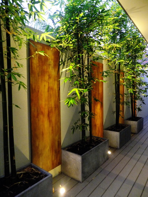 where can i get bamboo planters like these. Black Bedroom Furniture Sets. Home Design Ideas