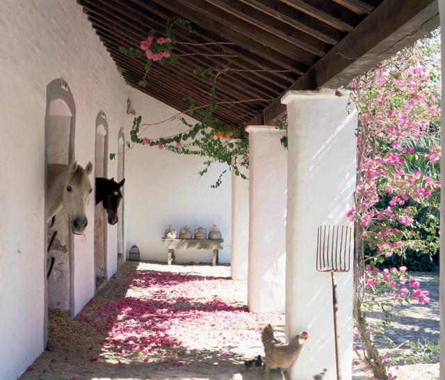 Cortijo el aguilon, tarifa, spain   mediterráneo   patio   otras zonas