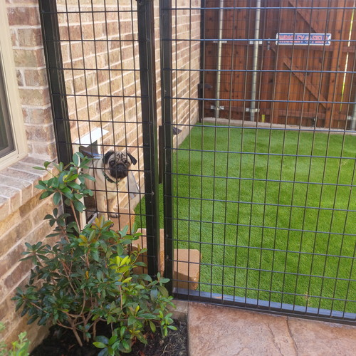 Outdoor dog potty area with fencing and turf