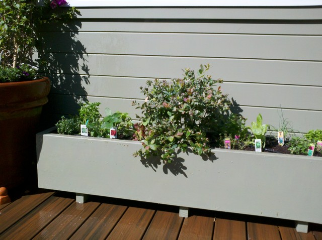 Edible planter blueberry/herbs/strawberry traditional-patio