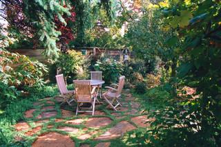 No Mow Lawns Amp Living Carpets Bylands Nurseries Ltd
