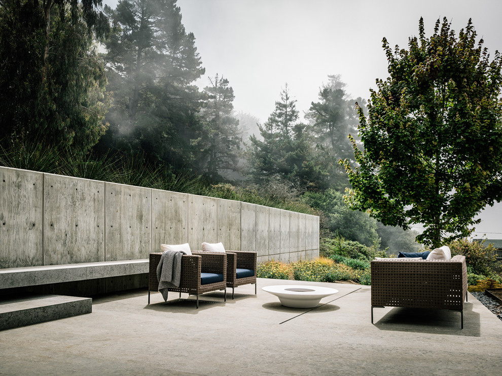 Example of a mid-sized trendy courtyard concrete patio design in San Francisco with no cover